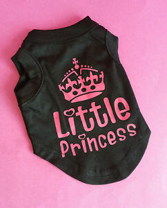 SMALL S 25CM TEACUP BLACK LITTLE PRINCESS DOG TOP CHIHUAHUA YORKIE PUPPY YORKIE - stoke on trent, Staffordshire, United Kingdom - SMALL S 25CM TEACUP BLACK LITTLE PRINCESS DOG TOP CHIHUAHUA YORKIE PUPPY YORKIE - stoke on trent, Staffordshire, United Kingdom