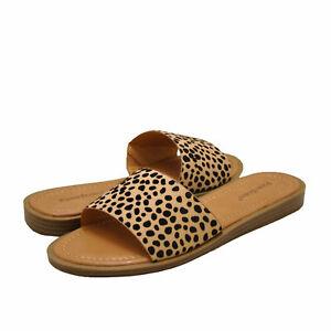 Women's Shoes Pierre Dumas LIZZIE-5