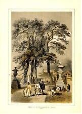 Temple of Hat-Chi-Man-Ya-Chu-Ro at Simoda  -   Admiral Perry Expedition  -  1856