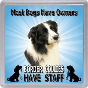 Border-Collie-Dog-Coaster-034-Border-Collies-Have-Staff-034-by-Starprint