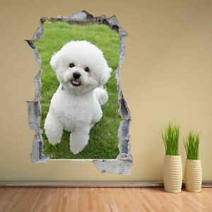 Details about Bichon Frise Puppy Dog Animal 3D Wall Sticker Mural Decal  Kids Room Decor CS100