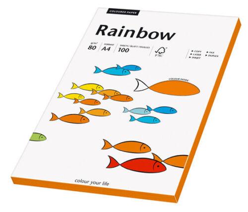 Rainbow Kopierpapier 100 Blatt COLOURED PAPER A4 80 g//qm Farbauswahl NEU