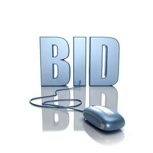 Online Auction Website Bid Now How To Start Up Business Plan New Ebay