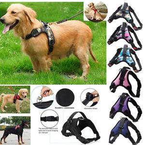 Pet-Dog-Vest-Harnais-Laisse-Collier-Set-no-Pull-Reglable-Small-Medium-Large-XL