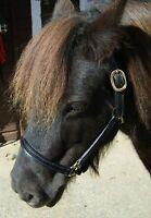 Miniature Pony/horse Leather Head Collar