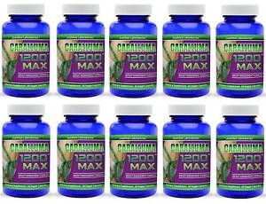 Caralluma Fimbriata All Natural Appetite Suppressant Diet Weight Loss Pills