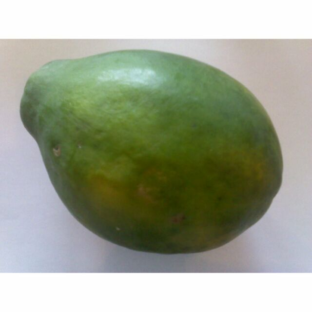 Papaya, Melonenbaum – Süße Früchte