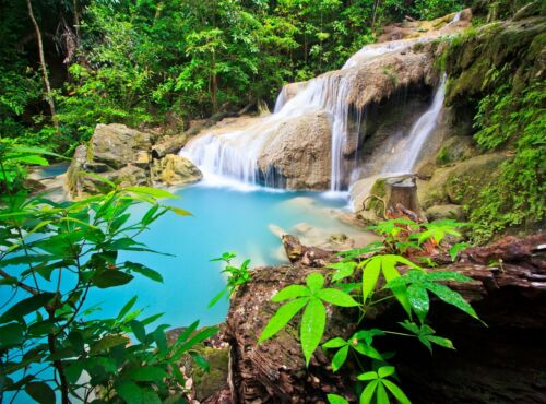 Waterfall in Thailand  Wall Mural Photo Wallpaper GIANT DECOR Paper Poster