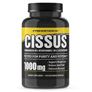 PrimaForce Cissus Supplement, 1000mg 120 Capsules Reduces Joint Pain