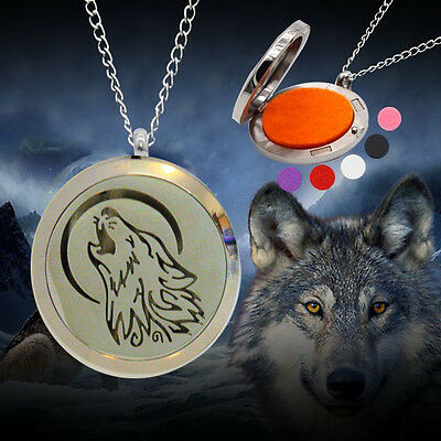 Perfume/Essential Oil Locket Pendant Necklace S/Steel Hypoallergenic with 5 pads