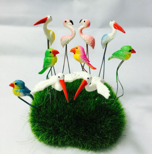 Set Tiny Multi Birds Miniature Animal Plastic Pick Decorate Mini Fairy Garden