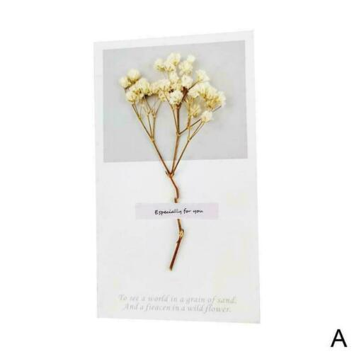 1pcs Creative Dried Flower Greeting Card Xmas Birthday Gift Cards N0S0