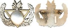 Brevet, insigne de Formateur Démineur, finition argent,dos grenu plat,A.B.(4075)