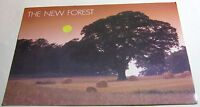 England The New Forest Sunset Cornfield PHA00266 DRG j Arthur Dixon - posted 198
