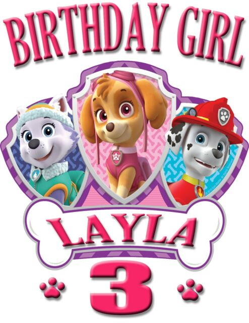 PERSONALIZED PAW PATROL Skye BIRTHDAY SHIRT ADD NAME AGE FOR FAMILY