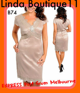 B74-NEW-Ladies-Taupe-Size-14-16-Wedding-Cocktail-Evening-Formal-Race-Lace-Dress