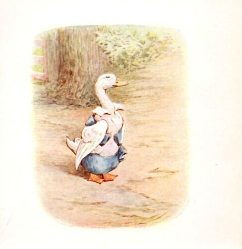 BEATRIX POTTER CHARACTERS reprint,iron on transfer or sticker 12 images