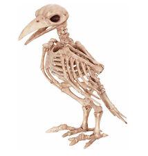 Vogel Gerippe Skelett Rabe Knochen Horror Halloween Party Deko  Mumie Zombie