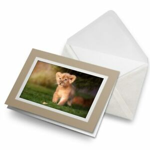 Greetings-Card-Biege-Cute-Baby-Lion-Cub-Cat-15785