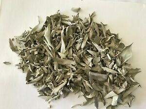 Dried  Natural California White Sage Loose  Leaves 3 oz Package Free Shipping