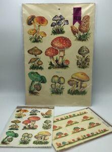 Lot-3-Retro-Vintage-Meyercord-Decals-1520-E-Mushrooms-1520-D-NOS-1531-D