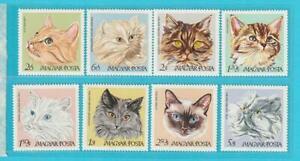 Ungarn-aus-1968-postfrisch-MiNr-2387-2394-Katzen