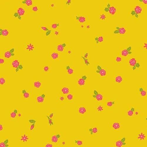 Alison Vidrio-sunprints 19-días sueño-sol * Nuevo