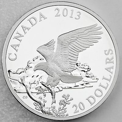 Canada 2014 American Bald Eagle Hunting Fish Day in Life $20 Pure Silver Proof