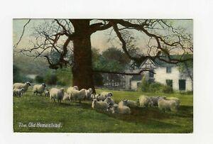 "Vintage Postcard The Old Homestead Halfpenny Stamp Nottingham ""Wildt & Kray""(B72"