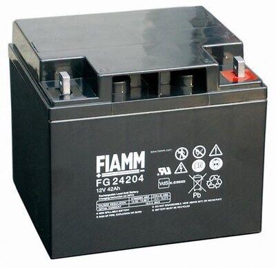 Batteria Fiamm Fg24204 12v 42a Piombo Gel Ermetica Ricaricabile Ups Allarmi Con Metodi Tradizionali