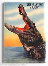 Florida Alligator FRIDGE MAGNET (2 x 3 inches) tourist state travel poster gator