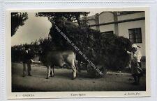 (Ga2827-100) Real Photo of GALICIA, Carro Tipico, Ox Cart, Spain c1940 EX