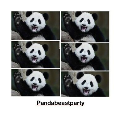 pandabeastparty