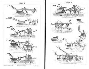 Charrues Charrue Rajolpflug Beetpflug Bauer Travail De Terrain Récolte Gravure Sur Bois De 1900-afficher Le Titre D'origine