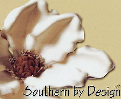 Southern by Design