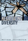 Negotiating Diversity: Liberalism, Democracy and Cultural Difference by Matthew Festenstein (Hardback, 2005)
