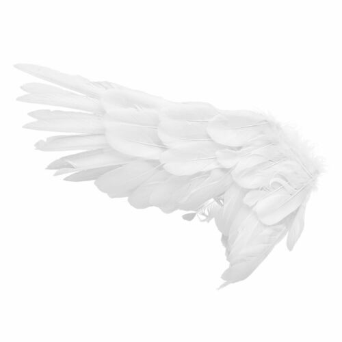 Feather Swallow Angel Wings Adult Hen Night or Kids Dance Party Cosplay Carnival