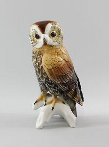 Objective Porcelain Figurine Bird Tawny Owl Ens 10x4 5/16in 9941684 Other Antique Ceramics Ceramics & Porcelain