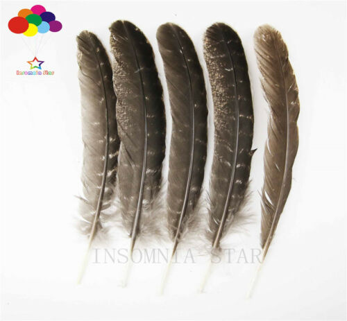 10-100 Natural Pheasant Tail Feather 8-13 Inch//20-32 Cm Pcs Diy Carnival Costume