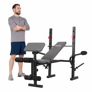 the body champ standard weight bench developer with
