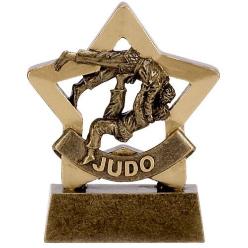 JUDO TROPHY MARTIAL ARTS MALE FIGURE JUDOKWAI ENGRAVED FREE AWARD MINI STAR