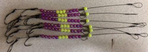 Snelled walleye harness// crawler harness purp// chart w 6 rigs