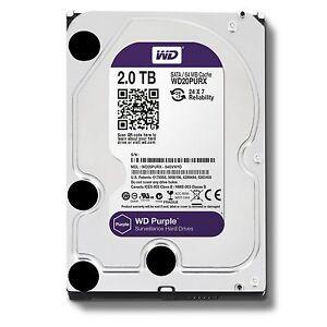"""2TB WD Purple Surveillance Sata Hard Drive 3.5""""  Western Digital WD20PURX 2 TB"""