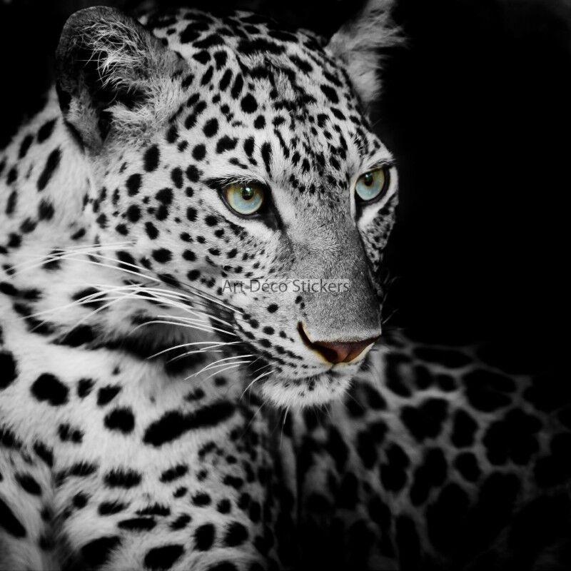 Carta dipinto gigante Tigre bianco bianco bianco 11067 11067 110b38