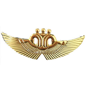 Details about China Southern Airline Pilot Wings Cap Hat Pin Badge Large  Air Force Emblem Gold