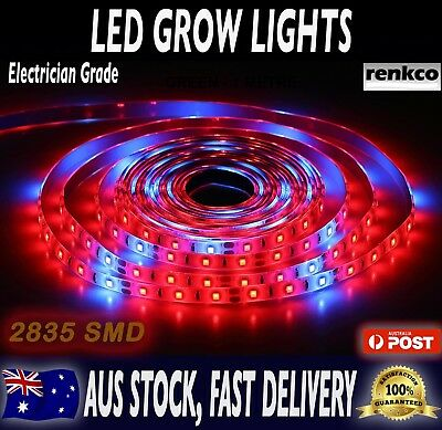 Electrician Grade 2835 SMD Red LED Strip Lights IP65 Waterproof 12V DC