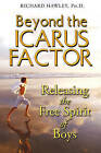 Beyond the Icarus Factor: Releasing the Free Spirit of Boys by Richard A. Hawley (Paperback, 2008)