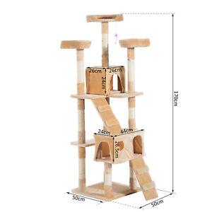Pawhut Cat Tree Scratcher Centre d'activités Crayon à jouets à griffer 170h (cm) 5055974823617