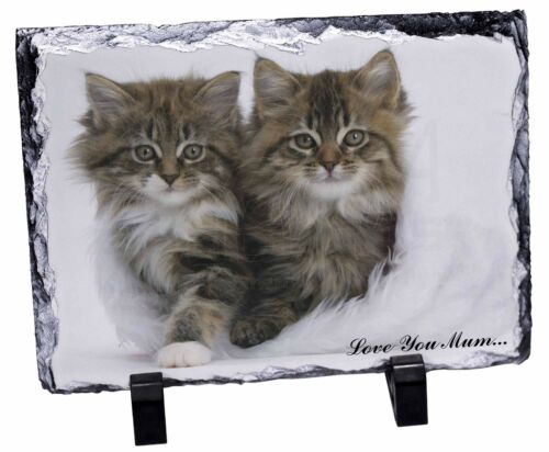 'Love You Mum' Mothers Day Cats Photo Slate Christmas Gift Ornament, AC189lymSL