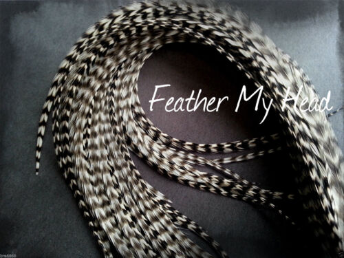 """Grizzly Super Long 11/"""" Whiting Eurohackle 14/"""" Feather Extension For Hair"""